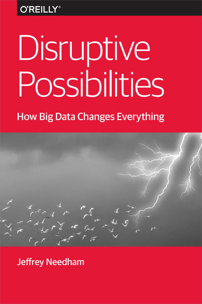 Disruptive Possibilities: How Big Data Changes Eve...
