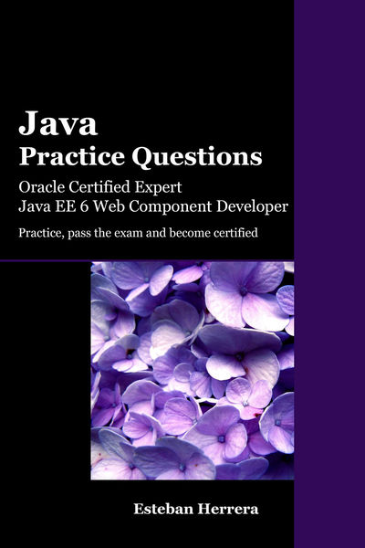 Java Practice Questions: Oracle Certified Expert, ...