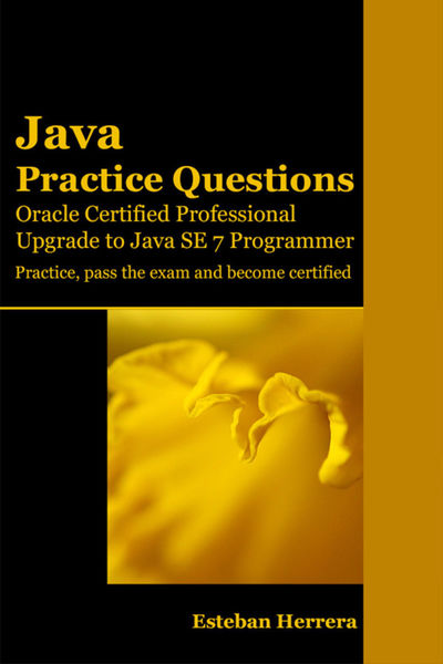 Java Practice Questions: Upgrade to Java SE 7 Prog...