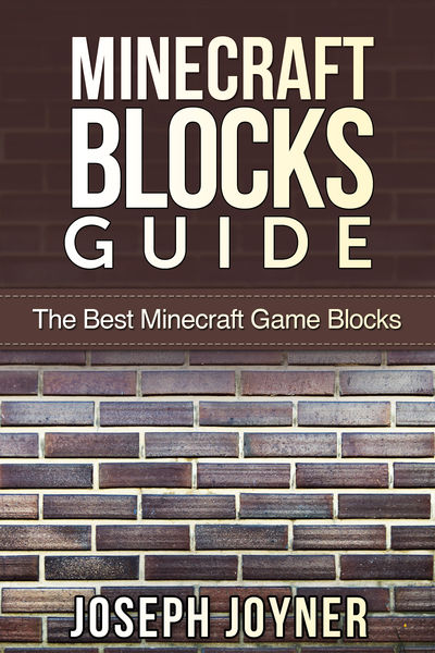 Minecraft Blocks Guide