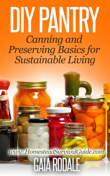 DIY Pantry: Canning and Preserving Basics for Sust...