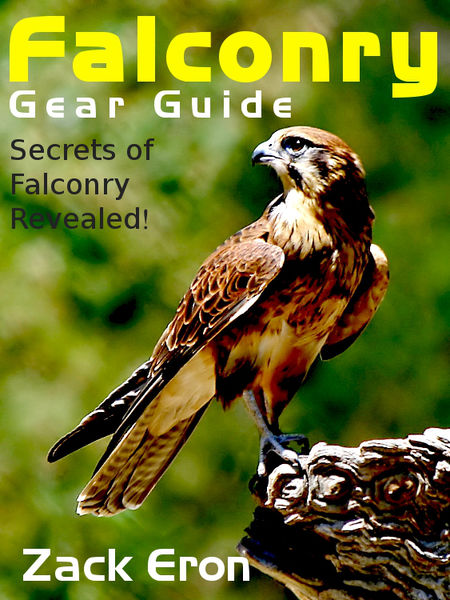 Falconry Gear Guide