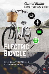 2019 Best Cheap Electric Bikes
