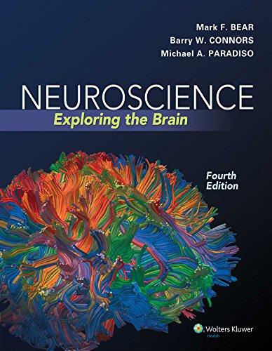 Neuroscience: Exploring the Brain