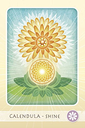 The Herbal Healing Deck