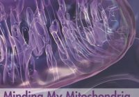 Minding My Mitochondria 2nd Edition: How I overcame secondary progressive  multiple sclerosis (MS) and got out of my  wheelchair.