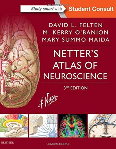 Netter's Atlas of Neuroscience (Netter Basic Science)