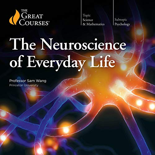 Neuroscience of Everyday Life