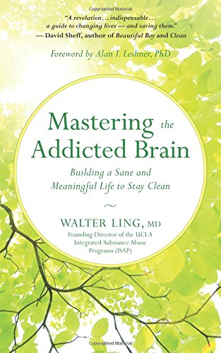 Mastering the Addicted Brain: Building a Sane and Meaningful Life to Stay Clean